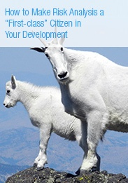 Whitepaper: How to Make Risk Analysis a First Class Citizen in Your Development